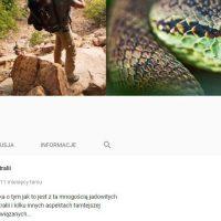 6 Szpilek - agencja reklamowa - Łódź - projekt - logo - Vagabundus